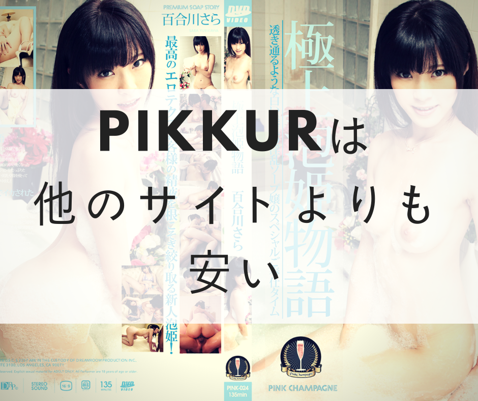 Pikkurは24.99ドル(日本円で約2500円)と他のサイトよりも安い